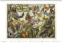 Farbenprächtige Fauna. Fische, Vögel, Schmetterlinge in Grafiken des 19 Jahrhunderts (Wandkalender 2019 DIN A2 quer) - Produktdetailbild 1