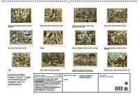 Farbenprächtige Fauna. Fische, Vögel, Schmetterlinge in Grafiken des 19 Jahrhunderts (Wandkalender 2019 DIN A2 quer) - Produktdetailbild 13