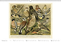 Farbenprächtige Fauna. Fische, Vögel, Schmetterlinge in Grafiken des 19 Jahrhunderts (Wandkalender 2019 DIN A3 quer) - Produktdetailbild 2