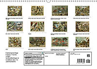 Farbenprächtige Fauna. Fische, Vögel, Schmetterlinge in Grafiken des 19 Jahrhunderts (Wandkalender 2019 DIN A3 quer) - Produktdetailbild 13