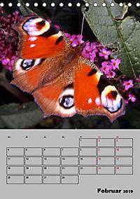 Farbenprächtige Tagfalter (Tischkalender 2019 DIN A5 hoch) - Produktdetailbild 2