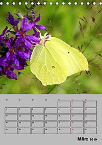 Farbenprächtige Tagfalter (Tischkalender 2019 DIN A5 hoch) - Produktdetailbild 3