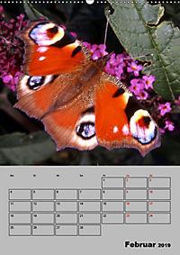 Farbenprächtige Tagfalter (Wandkalender 2019 DIN A2 hoch) - Produktdetailbild 2