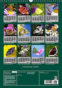 Farbenprächtige Tagfalter (Wandkalender 2019 DIN A3 hoch) - Produktdetailbild 13