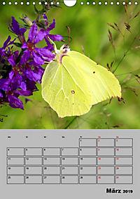 Farbenprächtige Tagfalter (Wandkalender 2019 DIN A4 hoch) - Produktdetailbild 3