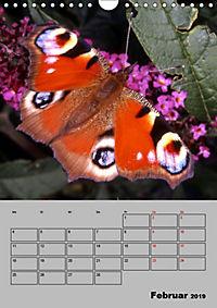 Farbenprächtige Tagfalter (Wandkalender 2019 DIN A4 hoch) - Produktdetailbild 2