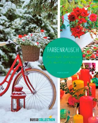 Farbenrausch - Angelica Linnhoff pdf epub