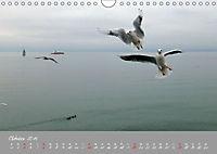 Farbrausch Bodensee (Wandkalender 2019 DIN A4 quer) - Produktdetailbild 10