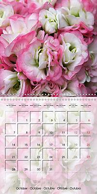 Fascinating Pelargonium (Wall Calendar 2019 300 × 300 mm Square) - Produktdetailbild 10