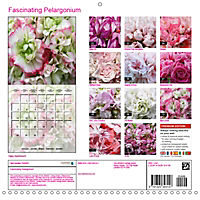 Fascinating Pelargonium (Wall Calendar 2019 300 × 300 mm Square) - Produktdetailbild 13