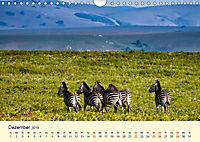 Faszination Afrikanischer Landschaften (Wandkalender 2019 DIN A4 quer) - Produktdetailbild 12