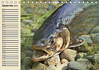 Faszination Angeln und Fischen (Tischkalender 2019 DIN A5 quer) - Produktdetailbild 9