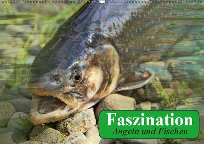 Faszination Angeln und Fischen (Wandkalender 2019 DIN A2 quer), Elisabeth Stanzer