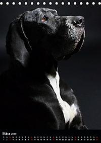 Faszination Deutsche Dogge (Tischkalender 2019 DIN A5 hoch) - Produktdetailbild 3