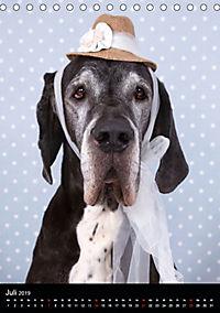 Faszination Deutsche Dogge (Tischkalender 2019 DIN A5 hoch) - Produktdetailbild 7