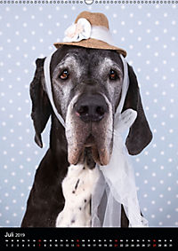 Faszination Deutsche Dogge (Wandkalender 2019 DIN A2 hoch) - Produktdetailbild 7