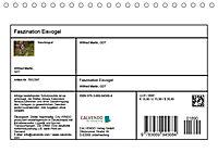 Faszination Eisvogel (Tischkalender 2019 DIN A5 quer) - Produktdetailbild 13