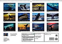Faszination Glattwale (Wandkalender 2019 DIN A3 quer) - Produktdetailbild 13