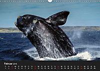 Faszination Glattwale (Wandkalender 2019 DIN A3 quer) - Produktdetailbild 2