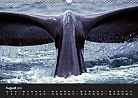 Faszination Glattwale (Wandkalender 2019 DIN A3 quer) - Produktdetailbild 8