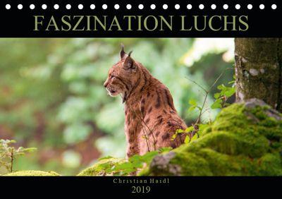 Faszination Luchs (Tischkalender 2019 DIN A5 quer), www.chphotography.de