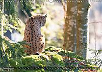 Faszination Luchs (Wandkalender 2019 DIN A3 quer) - Produktdetailbild 12