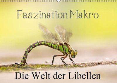 Faszination Makro - Die Welt der Libellen (Wandkalender 2019 DIN A2 quer), Andrea Potratz
