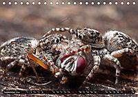 Faszination Makrofotografie: Beuteszenen (Tischkalender 2019 DIN A5 quer) - Produktdetailbild 9
