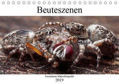 Faszination Makrofotografie: Beuteszenen (Tischkalender 2019 DIN A5 quer), Alexander Mett