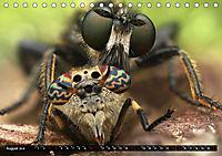 Faszination Makrofotografie: Beuteszenen (Tischkalender 2019 DIN A5 quer) - Produktdetailbild 8