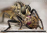 Faszination Makrofotografie: Beuteszenen (Tischkalender 2019 DIN A5 quer) - Produktdetailbild 12