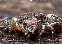 Faszination Makrofotografie: Beuteszenen (Wandkalender 2019 DIN A3 quer) - Produktdetailbild 9