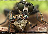 Faszination Makrofotografie: Beuteszenen (Wandkalender 2019 DIN A3 quer) - Produktdetailbild 8