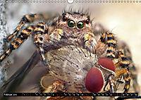 Faszination Makrofotografie: Beuteszenen (Wandkalender 2019 DIN A3 quer) - Produktdetailbild 2