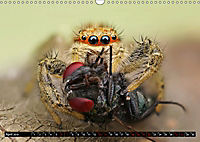 Faszination Makrofotografie: Beuteszenen (Wandkalender 2019 DIN A3 quer) - Produktdetailbild 4