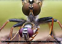 Faszination Makrofotografie: Beuteszenen (Wandkalender 2019 DIN A3 quer) - Produktdetailbild 5