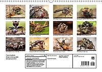 Faszination Makrofotografie: Beuteszenen (Wandkalender 2019 DIN A3 quer) - Produktdetailbild 13