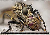 Faszination Makrofotografie: Beuteszenen (Wandkalender 2019 DIN A3 quer) - Produktdetailbild 12