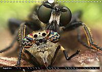 Faszination Makrofotografie: Beuteszenen (Wandkalender 2019 DIN A4 quer) - Produktdetailbild 8