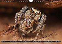 Faszination Makrofotografie: Beuteszenen (Wandkalender 2019 DIN A4 quer) - Produktdetailbild 7
