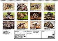 Faszination Makrofotografie: Beuteszenen (Wandkalender 2019 DIN A2 quer) - Produktdetailbild 13