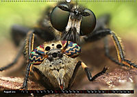 Faszination Makrofotografie: Beuteszenen (Wandkalender 2019 DIN A2 quer) - Produktdetailbild 8