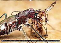 Faszination Makrofotografie: Beuteszenen (Wandkalender 2019 DIN A2 quer) - Produktdetailbild 10