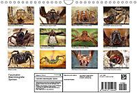 Faszination Makrofotografie: Spinnen (Wandkalender 2019 DIN A4 quer) - Produktdetailbild 11