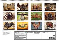 Faszination Makrofotografie: Spinnen (Wandkalender 2019 DIN A2 quer) - Produktdetailbild 13