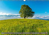 Faszination Oberallgäu (Wandkalender 2019 DIN A3 quer) - Produktdetailbild 5