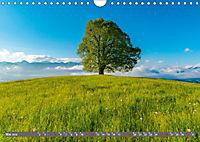 Faszination Oberallgäu (Wandkalender 2019 DIN A4 quer) - Produktdetailbild 5
