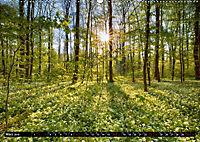 Faszination Pfalz (Wandkalender 2019 DIN A2 quer) - Produktdetailbild 3