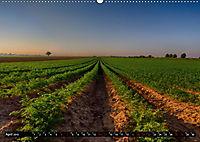 Faszination Pfalz (Wandkalender 2019 DIN A2 quer) - Produktdetailbild 4