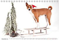 Faszinierende Basenjis (Tischkalender 2019 DIN A5 quer) - Produktdetailbild 12